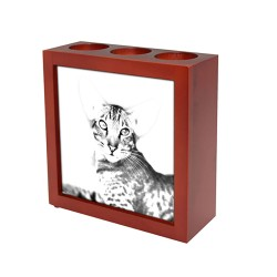Persian cat - wooden stand for candles/pens with the image of a cat !