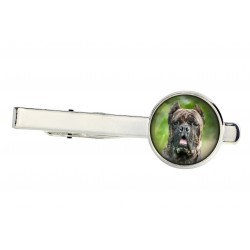 Tie clip for dog lovers. Photo jewellery. Men's jewellery. Handmade.