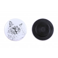 Magnet with a cat